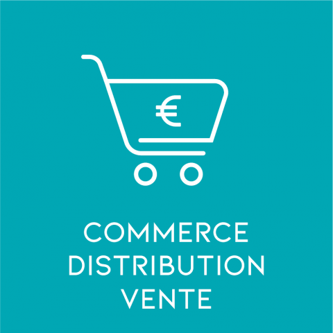Commerce Distribution Vente